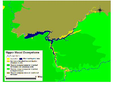 Upper Macal Ecosystems. Click for larger image