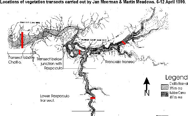 Location of vegetation transects allong the Macal River