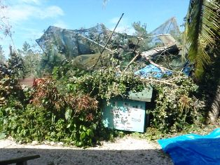 Hurricane Damage Belize Zoo