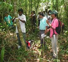 Transect Training