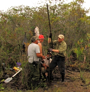Coring in the Sarstoon Temash National Park