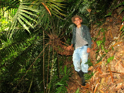 Boris Arevalo with Ceratozamia robusta