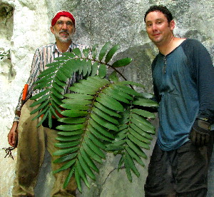 Jan Meerman, Michael Calonje with Zamia sp.nov.